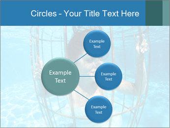 0000094266 PowerPoint Templates - Slide 79