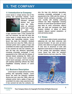 0000094266 Word Template - Page 3