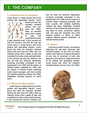 0000094271 Word Template - Page 3