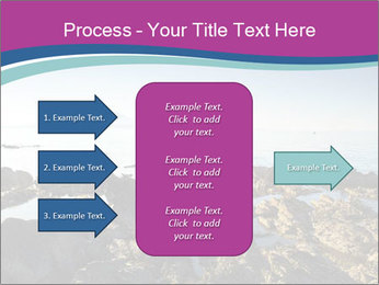 0000094272 PowerPoint Templates - Slide 85