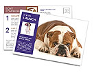 0000094274 Postcard Templates