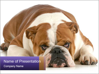 0000094274 PowerPoint Templates - Slide 1