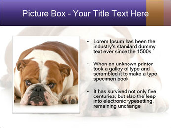 0000094274 PowerPoint Templates - Slide 13