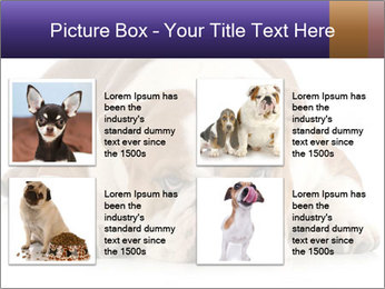 0000094274 PowerPoint Templates - Slide 14