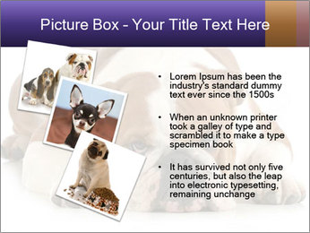 0000094274 PowerPoint Templates - Slide 17