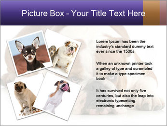 0000094274 PowerPoint Templates - Slide 23