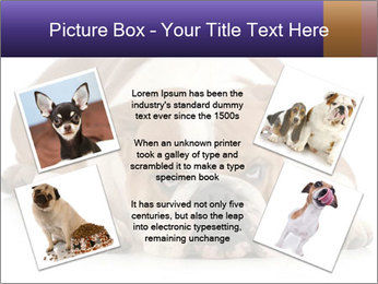 0000094274 PowerPoint Templates - Slide 24