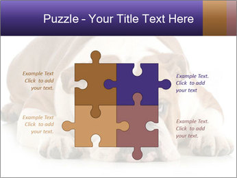 0000094274 PowerPoint Templates - Slide 43