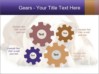 0000094274 PowerPoint Templates - Slide 47