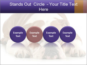 0000094274 PowerPoint Templates - Slide 76