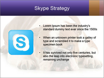0000094274 PowerPoint Templates - Slide 8