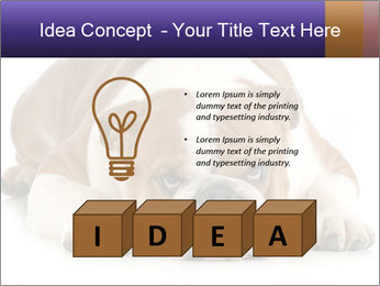 0000094274 PowerPoint Templates - Slide 80
