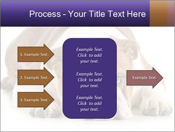 0000094274 PowerPoint Templates - Slide 85