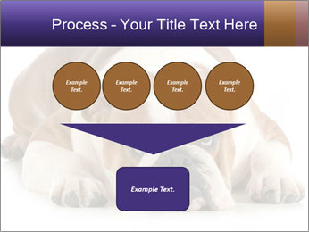 0000094274 PowerPoint Templates - Slide 93