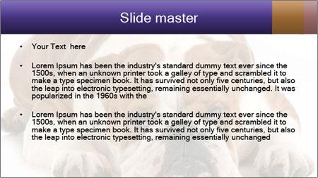 0000094274 PowerPoint Template - Slide 2