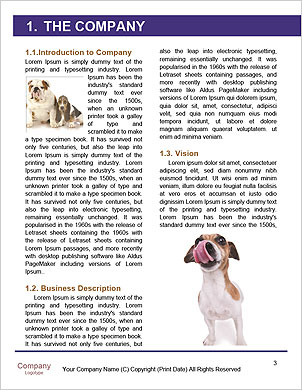 0000094274 Word Template - Page 3