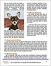 0000094274 Word Templates - Page 4