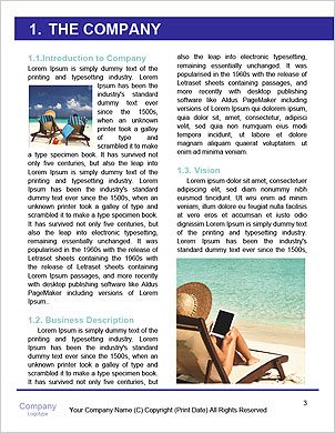 0000094276 Word Template - Page 3
