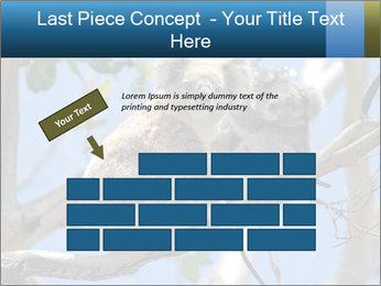0000094280 PowerPoint Template - Slide 46