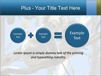 0000094280 PowerPoint Template - Slide 75