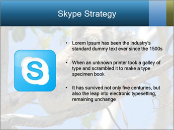 0000094280 PowerPoint Template - Slide 8