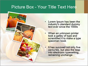 0000094281 PowerPoint Templates - Slide 17