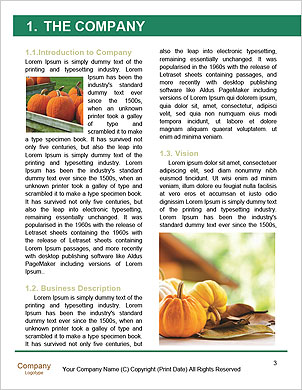 0000094281 Word Template - Page 3