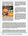 0000094281 Word Templates - Page 4