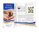 0000094284 Brochure Templates
