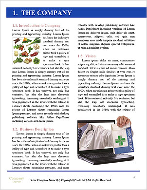 0000094284 Word Template - Page 3