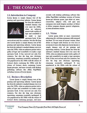 0000094285 Word Template - Page 3