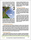 0000094287 Word Template - Page 4