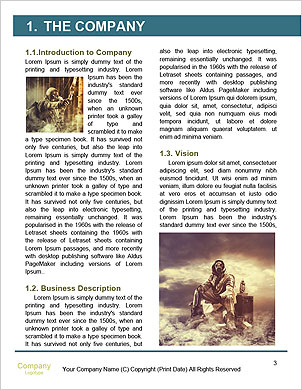 0000094288 Word Template - Page 3