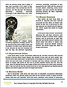0000094288 Word Templates - Page 4