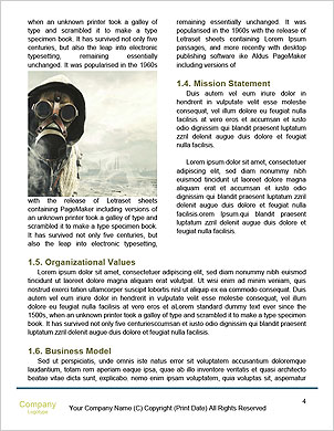 0000094288 Word Template - Page 4