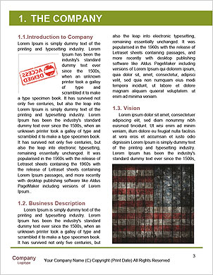 0000094297 Word Template - Page 3