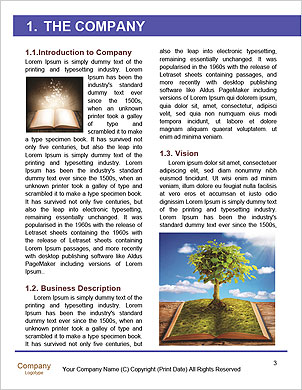 0000094302 Word Template - Page 3