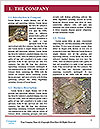 0000094310 Word Template - Page 3