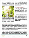 0000094312 Word Templates - Page 4