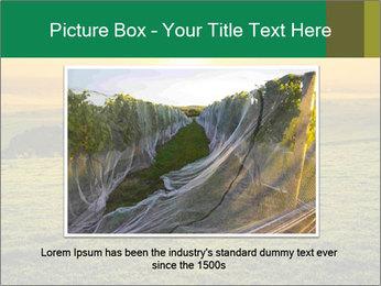 Beautiful Orange Sunrise PowerPoint Template - Slide 15