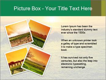 Beautiful Orange Sunrise PowerPoint Template - Slide 23