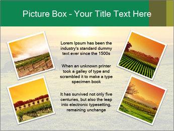 Beautiful Orange Sunrise PowerPoint Template - Slide 24