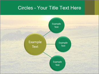 Beautiful Orange Sunrise PowerPoint Template - Slide 79