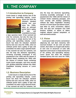 0000094313 Word Template - Page 3