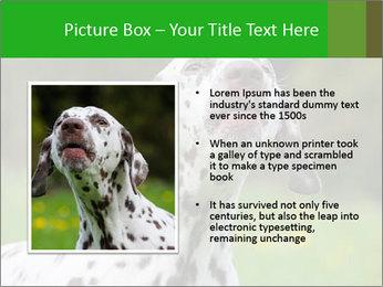 Barking dog PowerPoint Template - Slide 13