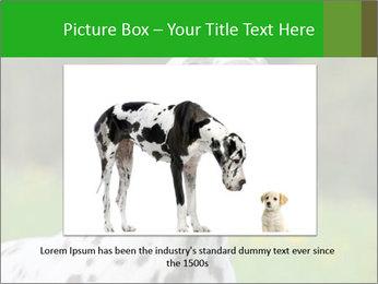 Barking dog PowerPoint Template - Slide 15