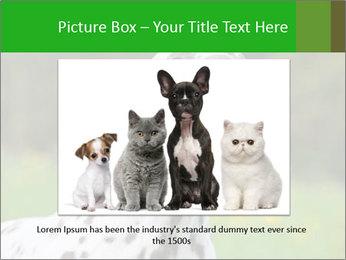 Barking dog PowerPoint Template - Slide 16