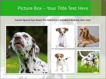Barking dog PowerPoint Template - Slide 19