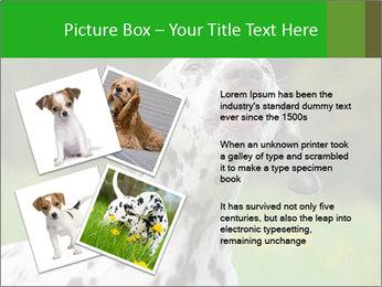 Barking dog PowerPoint Template - Slide 23