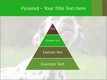 Barking dog PowerPoint Template - Slide 30